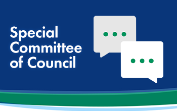 Special Committee of Council